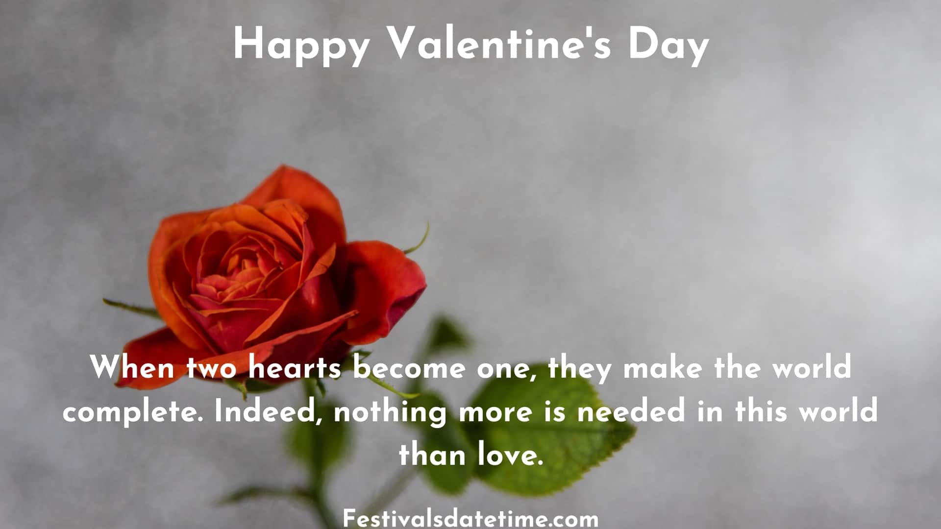 valentine_day_images_of_flowers