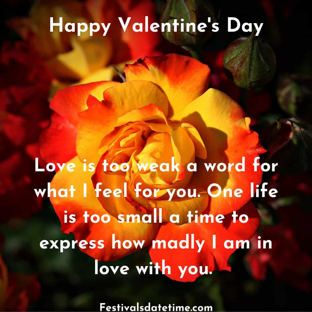 valentine_day_quotes_with_pics