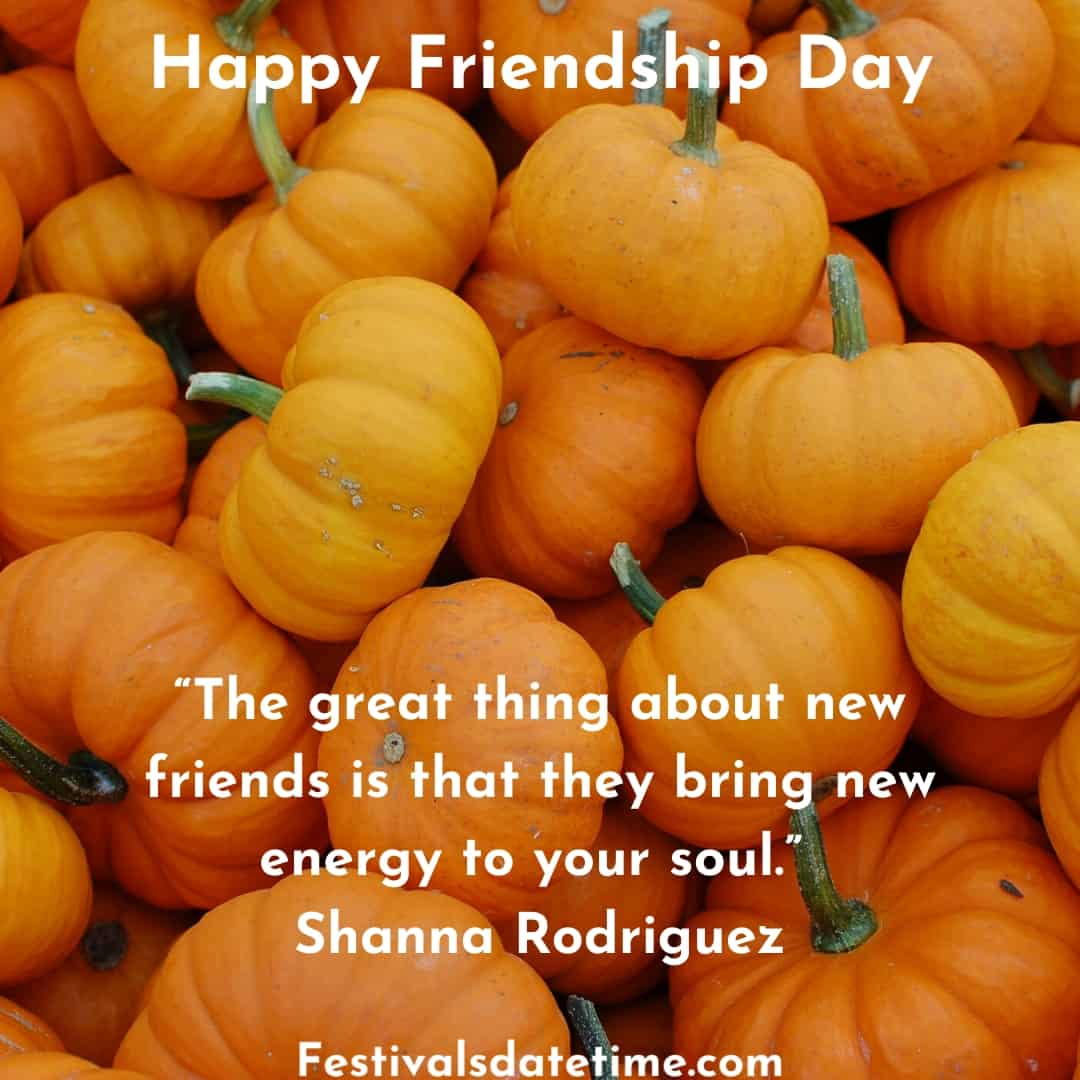 friendship_day_funny_quotes