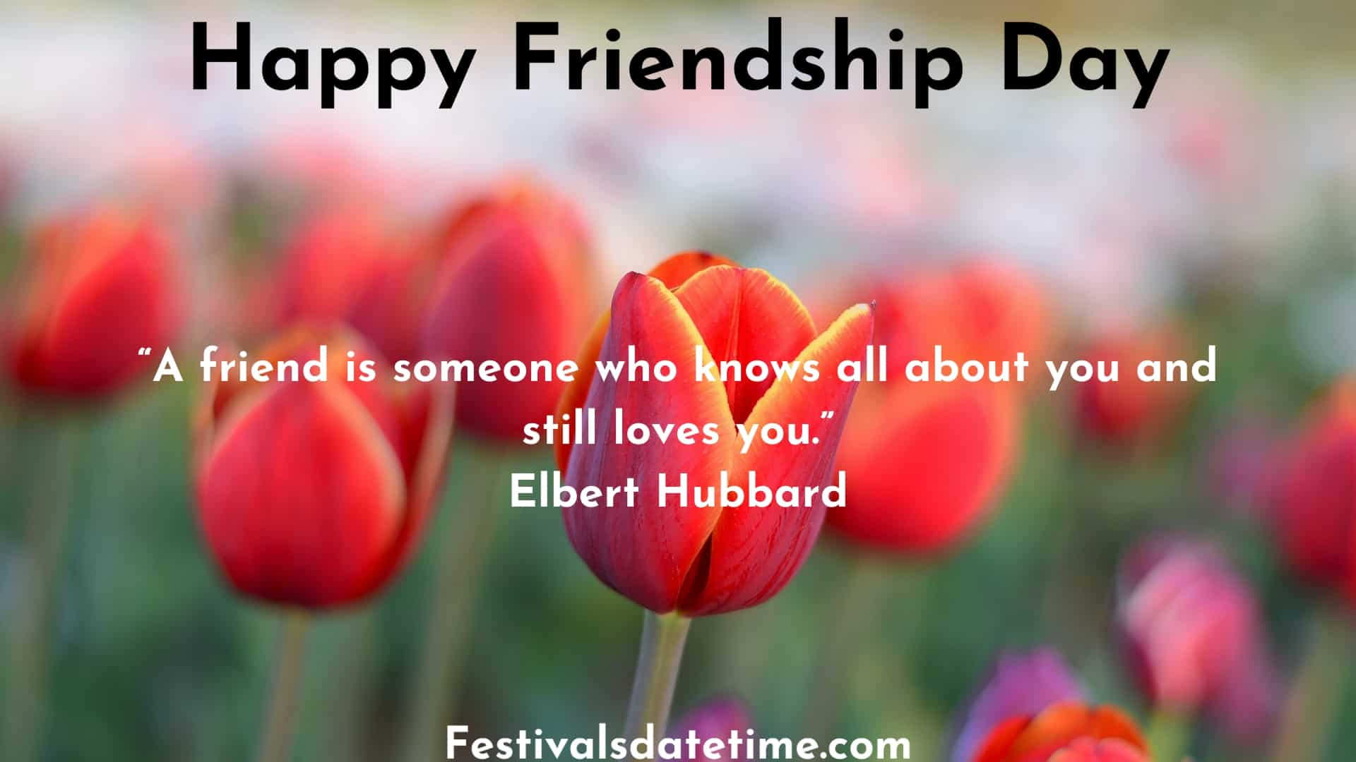 funny_friendship_day_quotes
