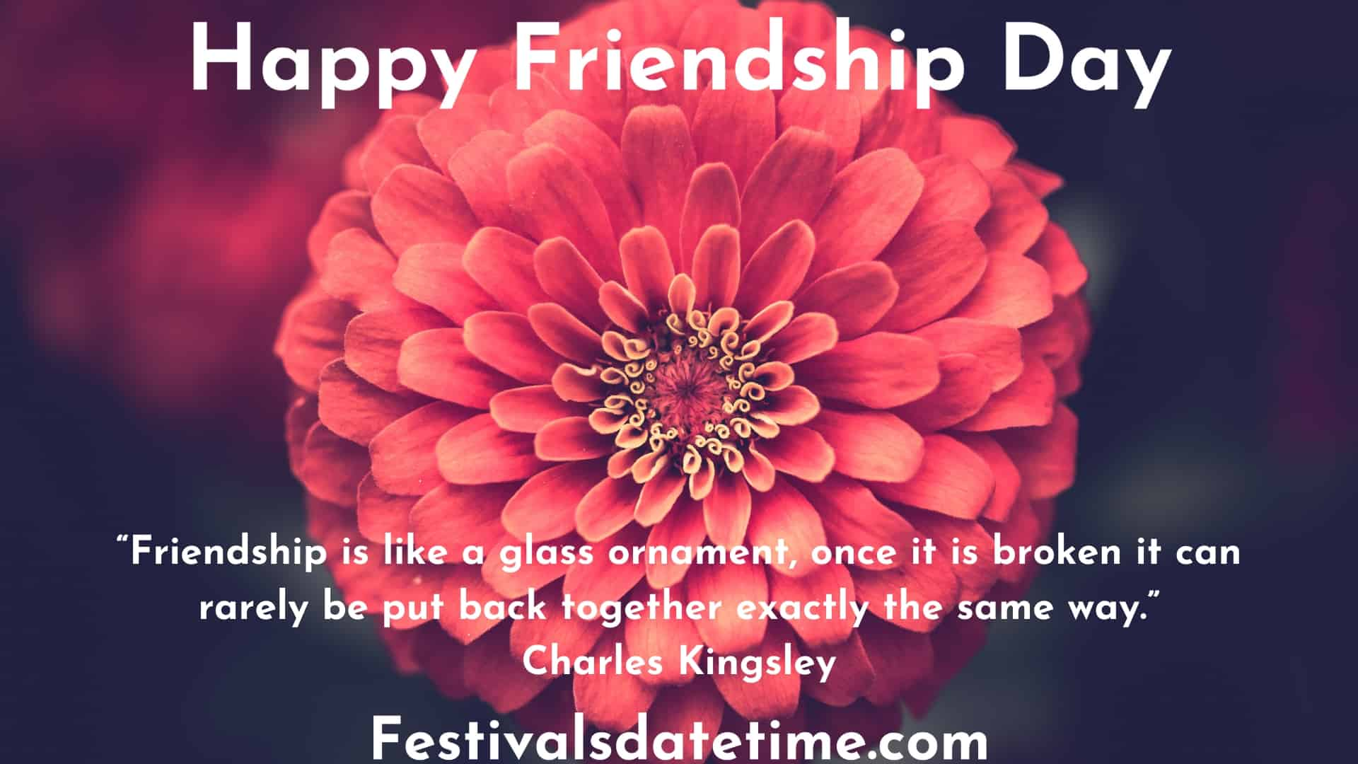 quotes_for_friendship_day